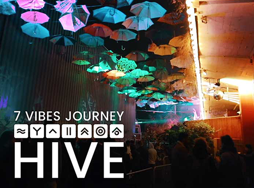 7 vibes journey hive club zurich